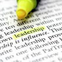 CEO Culture: Leadership Traits