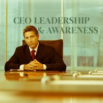 CEO Leadership and Awareness