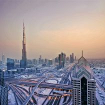 UAE: Executive Job Market Insights and Statistics