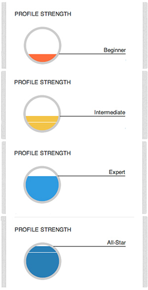 linkedin-profile-strength-meter